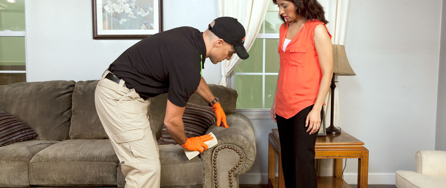 Montebello, CA carpet upholstery cleaning